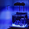 ILLUMAGIC BLAZE X Mini LED Aquarium Lighting (Fresh & Marine)