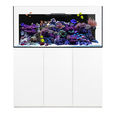 Waterbox Aquariums Platinum PRO 190 gallons aquarium, Pro 190.5, 2 colors - FREE SHIPPING