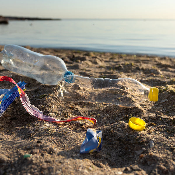Will creating a circular economy for plastics stop ocean pollution?