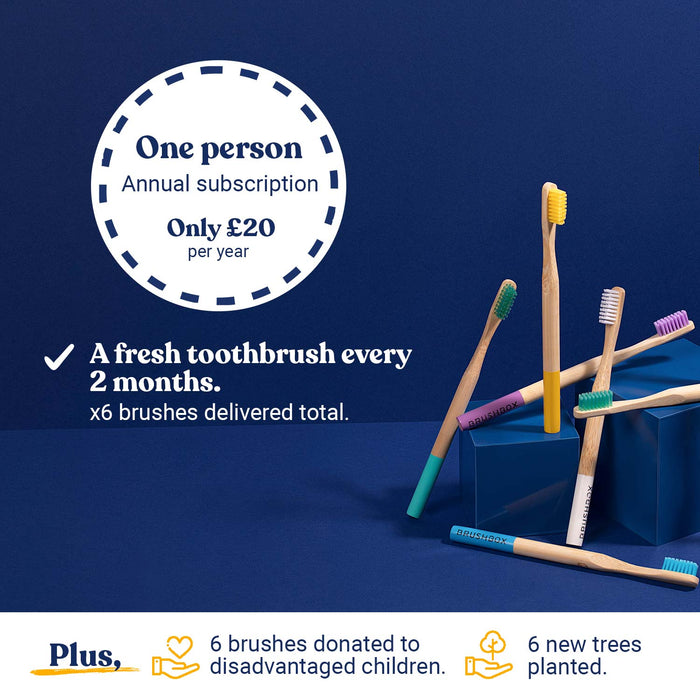 Smooth Bamboo Toothbrush - Annual Subscription - For One Person