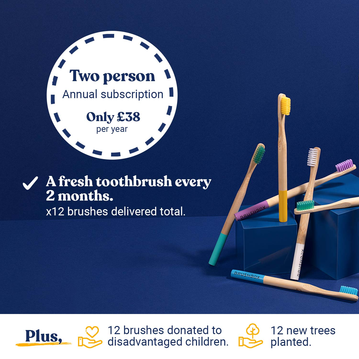 Smooth Bamboo Toothbrush - Annual Subscription - For Two People