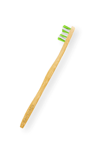 Bamboo Brush (Annual Subscription)