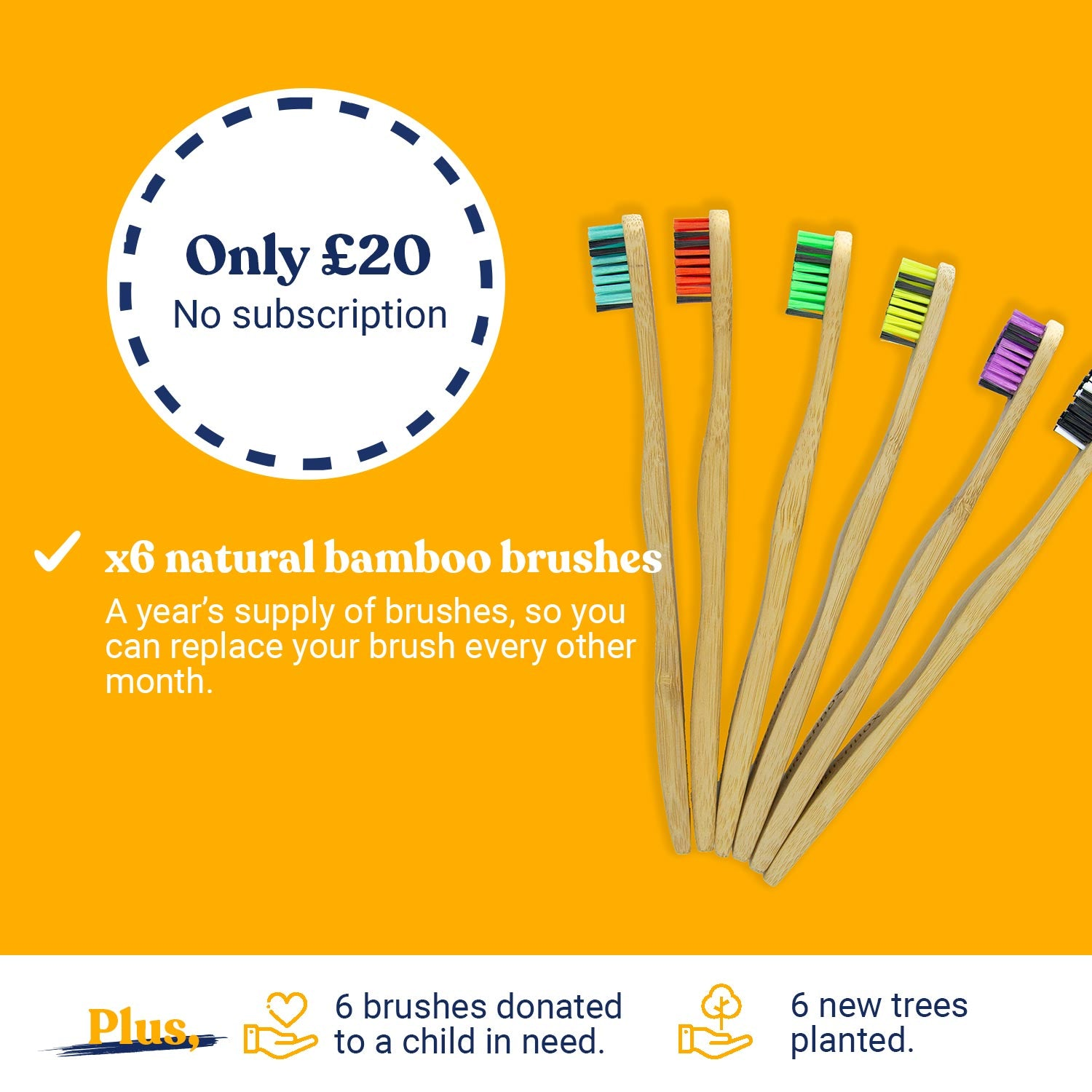 Curved Bamboo Toothbrush - One-year supply (multi-selection)