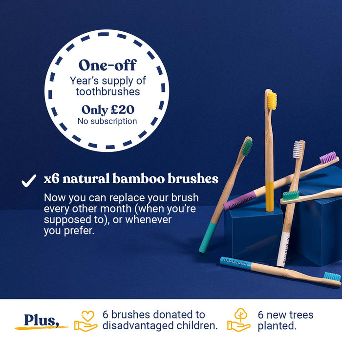 Smooth Bamboo Toothbrush - One-off - Annual Supply