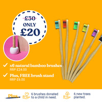 Sweatcoin US Exclusive - Year's Supply of Bamboo Brushes with Free Gift
