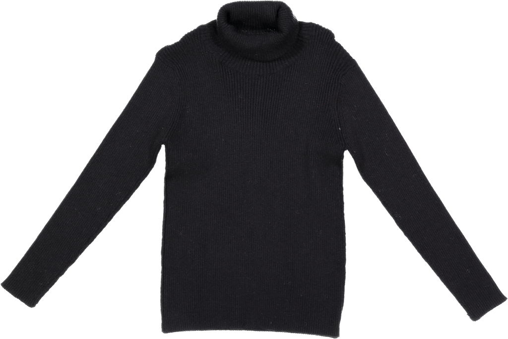 Belati Black Turtleneck Basic Shell