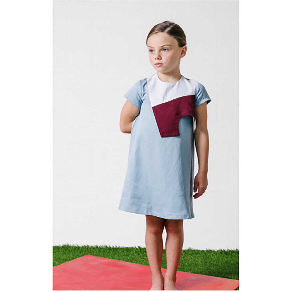 Kipp Blue Color Block Panel Dress