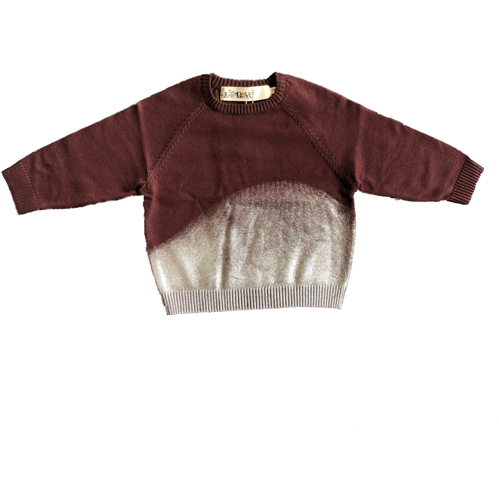 Nove Plum/Metallic Crew Neck Sweater