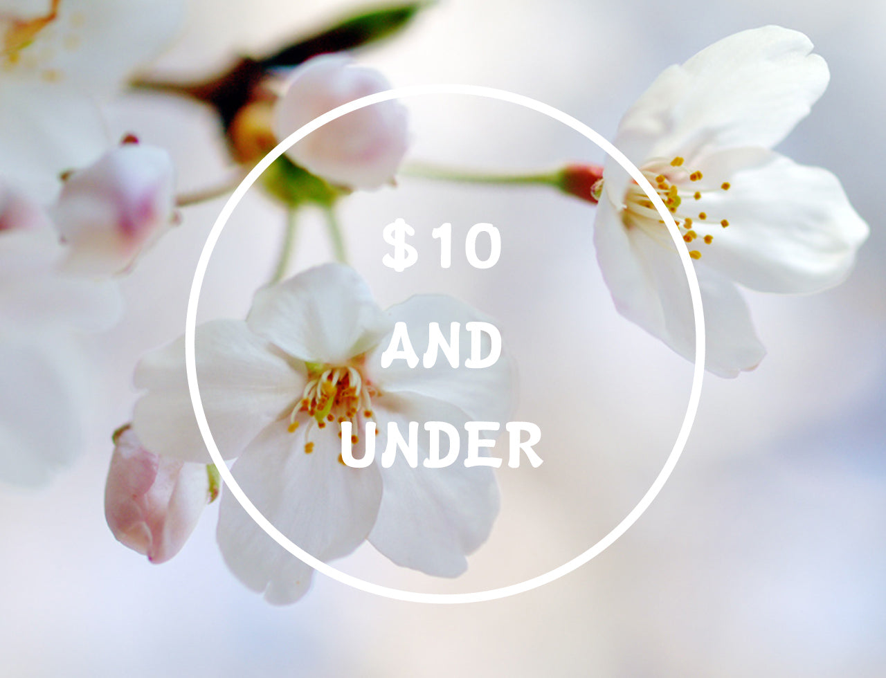 Shop $10 and under