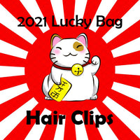 2021 Lucky Bag Hair Clips