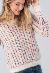Multi Color Fuzzy Sweater