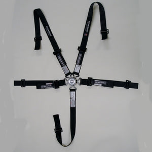 Ultra-Shield Junior 5-Point Camlock Harness 3in Pull-Down HB46201