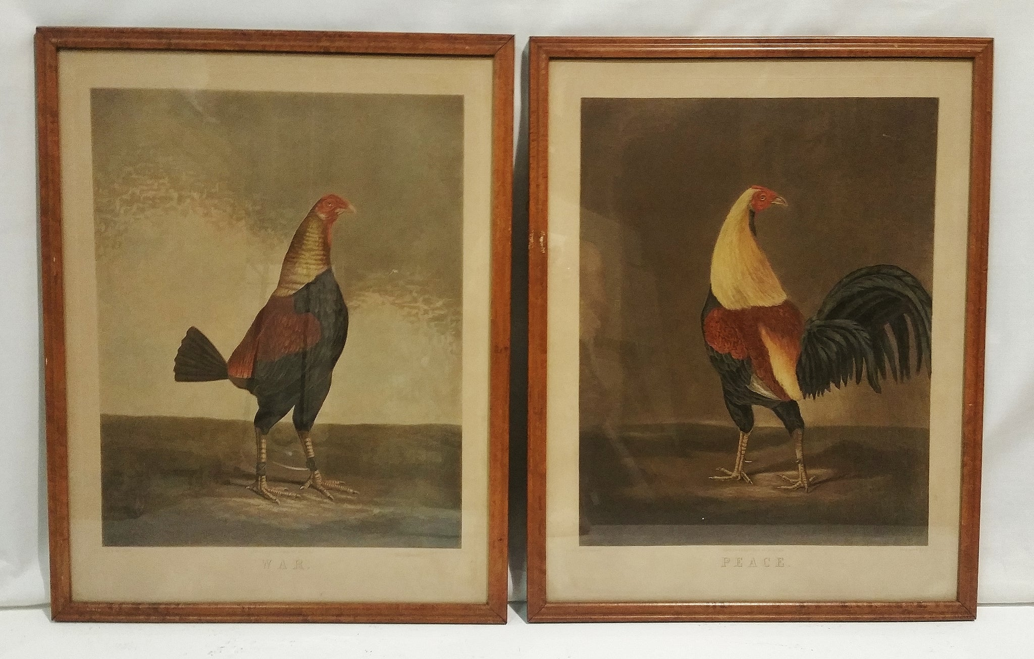 "PAIR ""WAR"" and ""PEACE"" Roosters 19th Century Engraving Prints"