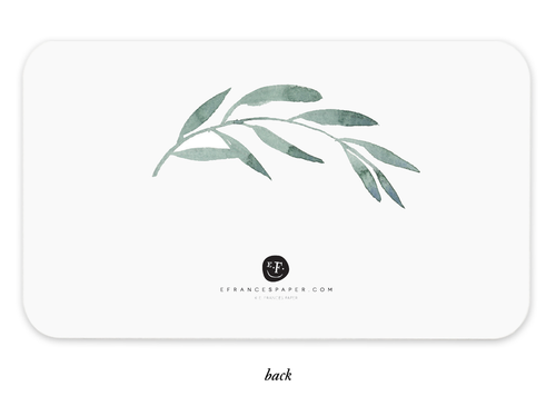 E. Frances Little Notecards - Olive Branches - Ettiene Market
