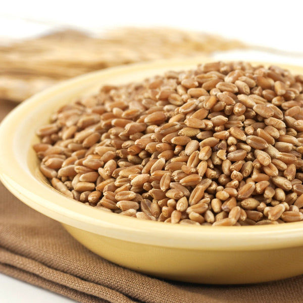 Organic Hard Red Wheat Berries