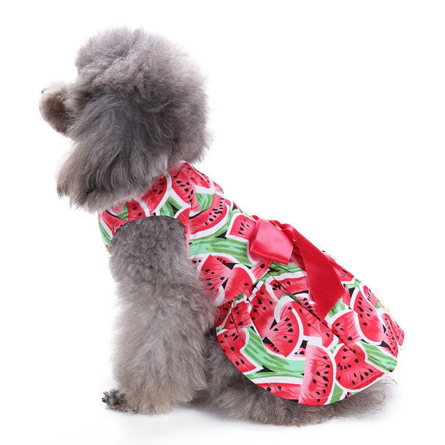 Watermelon Dress for Pup