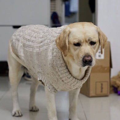 [MPK Dog Sweater] Wool Sweater for Small to Medium Size Dogs, Wool Dog Sweater, Labrador Sweater, Dog Clothes, 4 Sizes Available