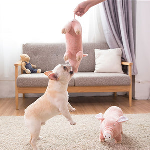 Pet dog Vent Toy Gnawing Molars French Bulldog Couple Sleeping Four feet pig dog Pet plush toy Pet Oestrus Venting Plush Supplie