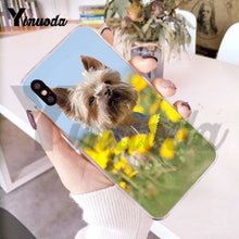 Yorkshire Terrier Phone Case for iPhone