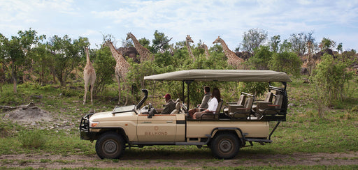 BELMOND Grand Tour of Southern Africa, Cape Town and Botswana