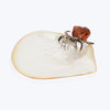 Mother of Pearl Plate with Hermit Crab