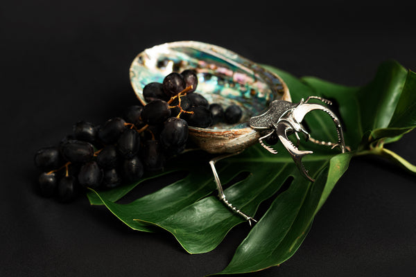 Abalone Shell Bowl with Silver Beetle
