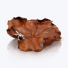 Teak Wood Bowl with Silver Frog