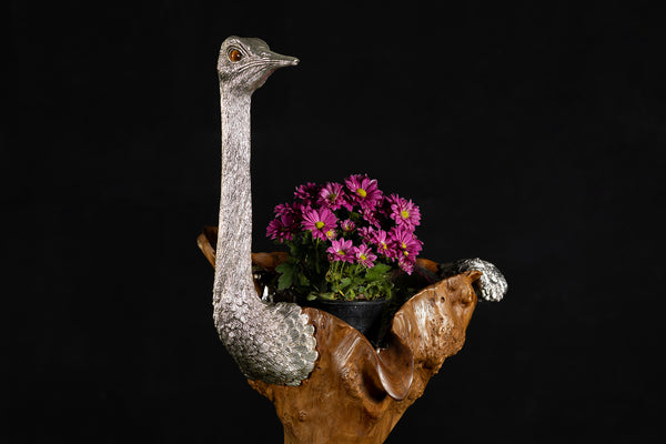 Teak Wood Ostrich Sculpture