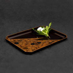 Japanese Lacquer Tray with Shaded Leaf Motifs