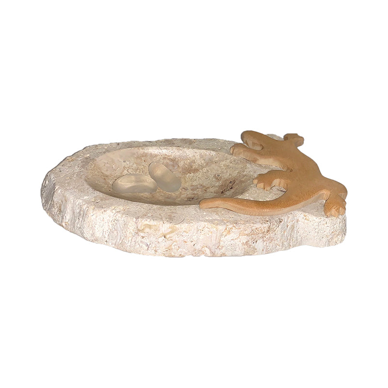 Lizard on marble soap dish