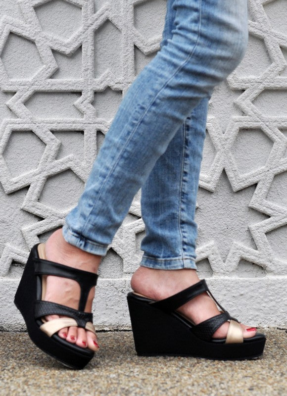 Celine Wedges in Black