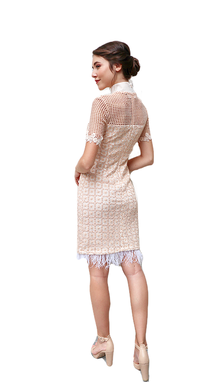 Miss Seventythree Oriental Lace Dress in Beige