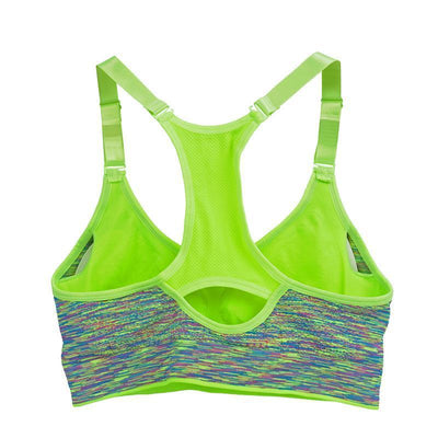 Queen Chakra Padded Jogging Top