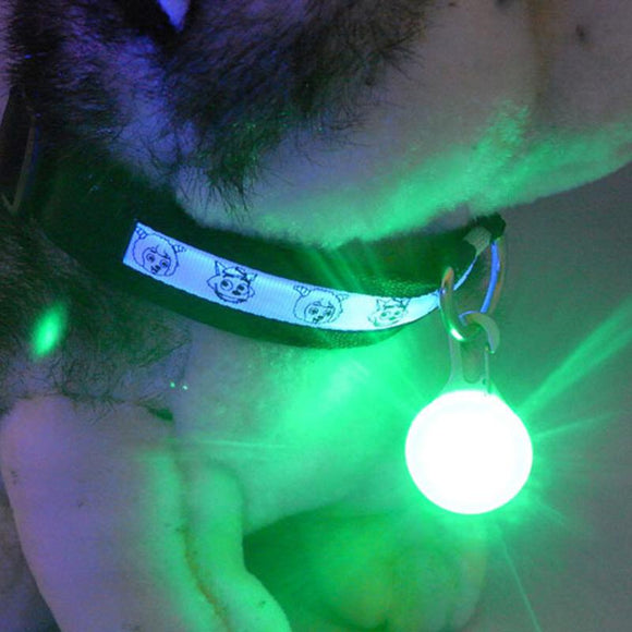 PET COLLAR LED LIGHT NIGHT SAFETY FLASH BRIGHT GLOWING ACCESSORIES PUSH BUTTON S