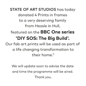 State of Art featured on BBC DIY SOS with Nick Knowles