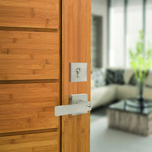 probrico door handle set