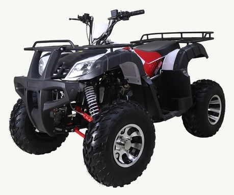 Bull 200 ATV 170cc Junior Adult Automatic Quad Four Wheeler By Ride MotorSportsPro