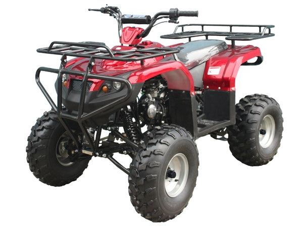 "Tao Tao 125cc ATV Full Size ATV,Large 21""/20""Tires"