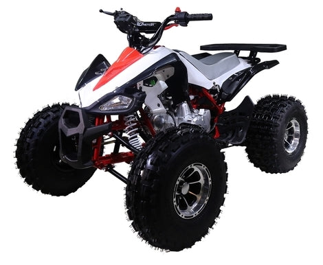"125cc Atv Cheetah Sport ATV 4 Wheeler with Automatic Transmission w/Reverse and 19""/18"" Alloy Rims & Wheels"