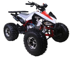 125cc Atv Cheetah Sport ATV 4 Wheeler with Automatic Transmission w/Reverse and 19