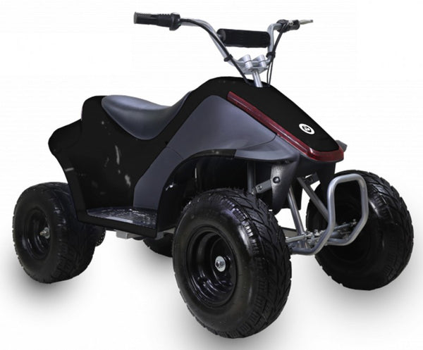 TAOTAO KIDS ELECTRIC ATV