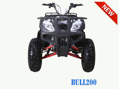 200cc Full Size Bull Fully Assembled Delivered