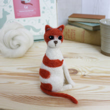 Cat needle felting craft kit