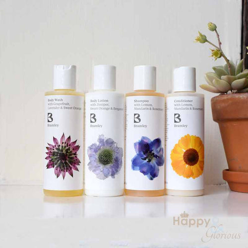 Travel body & hair gift set by Bramley Products