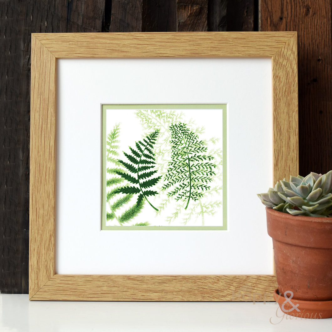 Ferns 'Greenery' digital print by Kate Tompsett