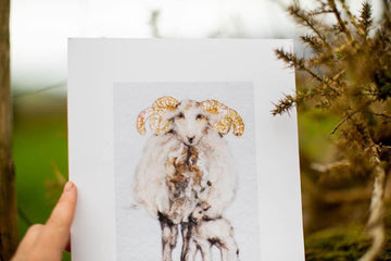 The Kerry Way sheep print