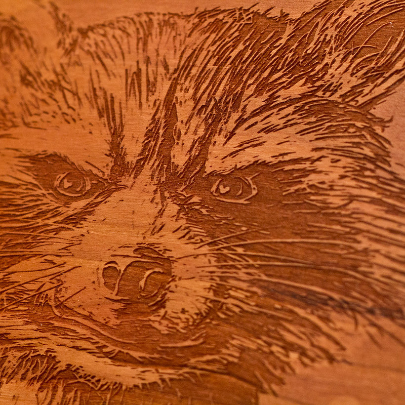 What's a Raccoon? Wood Portrait