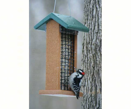 Suet & Log Feeders