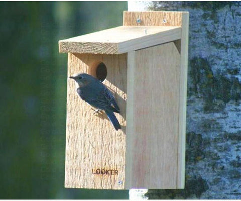 Birdhouses, Nestboxes & Roosts