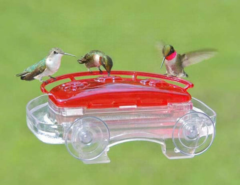 Window Box Hummingbird Feeder